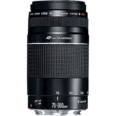 Canon EF 75-300mm f/4.0-5.6 III USM SLR Teleobjetivo Negro - Imagen 1